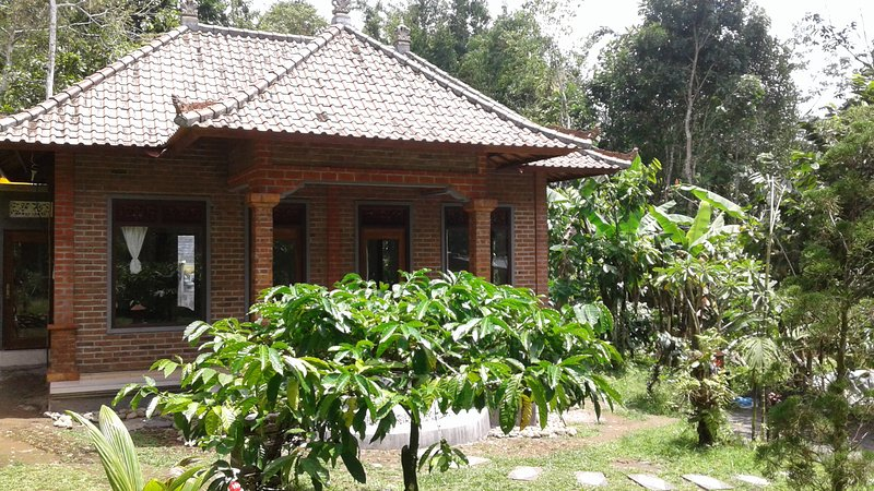 My home is close to the Batukaru mountain and temple, adjacent to the Jatiluwih, vacation rental in Pupuan