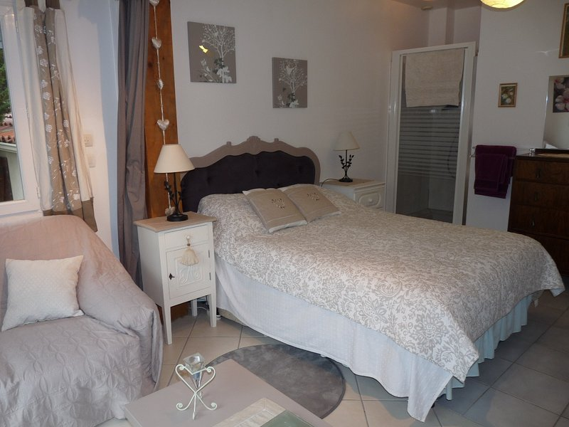 Chez Zoe, Les Libellules airconditioned apartment with pool and spectacular view, vacation rental in Saint-Jean-de-la-Blaquiere