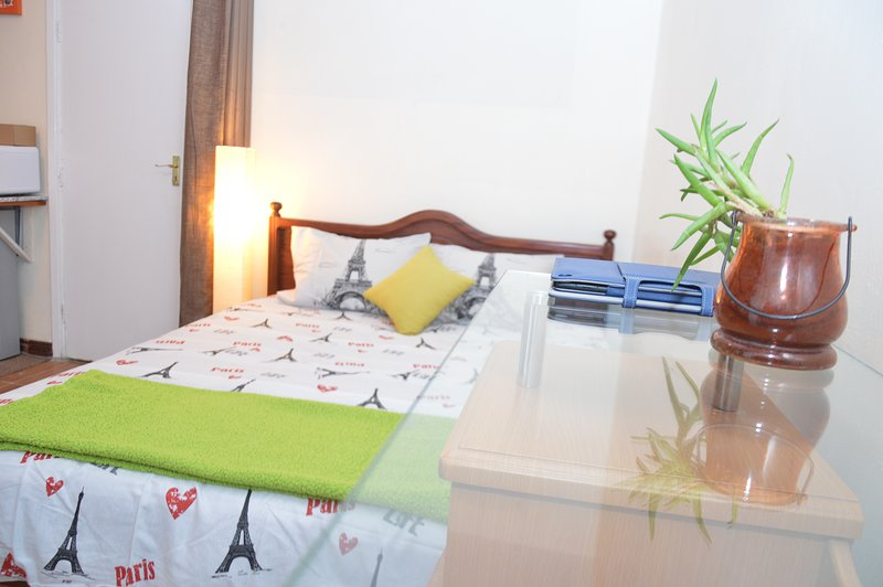 Serene, Cozy , Quiete , Sapcious StudiO near Nairobi CBD, holiday rental in Mount Kenya National Park
