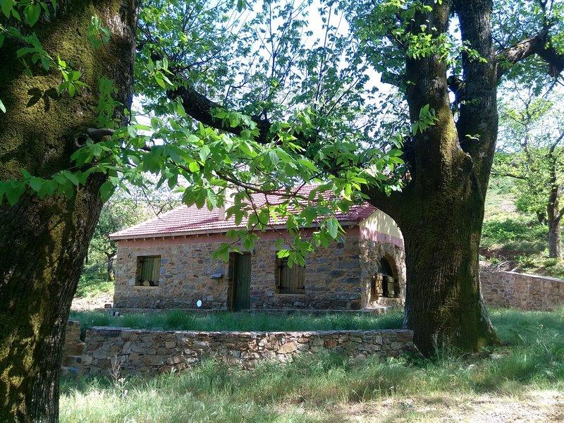 Nature Lodge ofrece privacidad