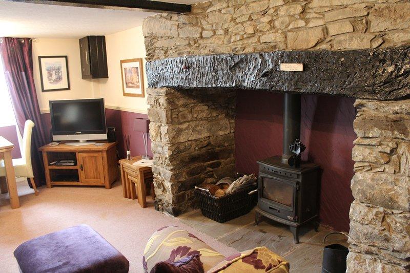 Cosy log burner