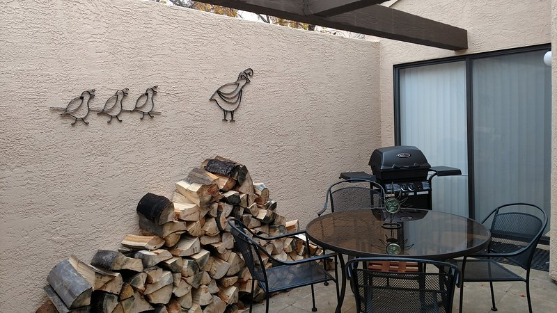 Your patio with BBQ grill and wood for your fireplace.