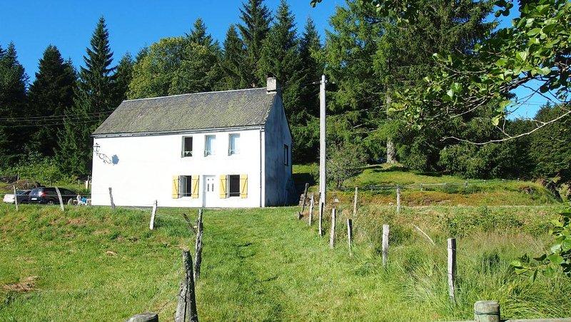 Amazing house with mountain view, location de vacances à Saint-Genès-Champespe