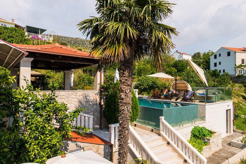 Un aperçu de la piscine commune avec terrasse, chaises longues, terrasse sur le toit recouvert.