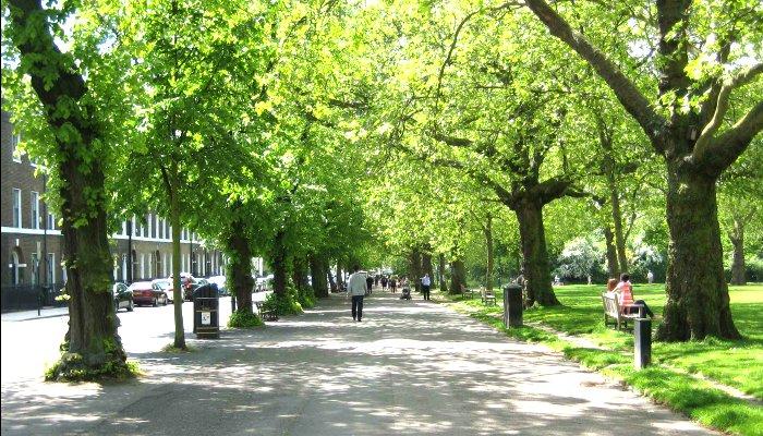 Highbury Fields Park cuenta con pistas de tenis y una cafetería.