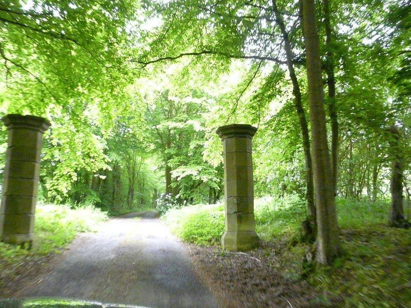 Los pilares en nuestro camino desde el carril a nuestra granja, lleno de campanillas en la primavera