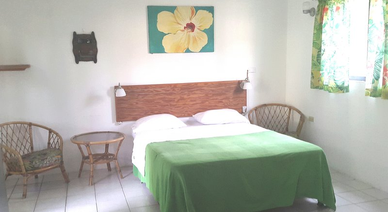 Studio with kitchenette. Queen Size bed. Cabe TV and WiFi access