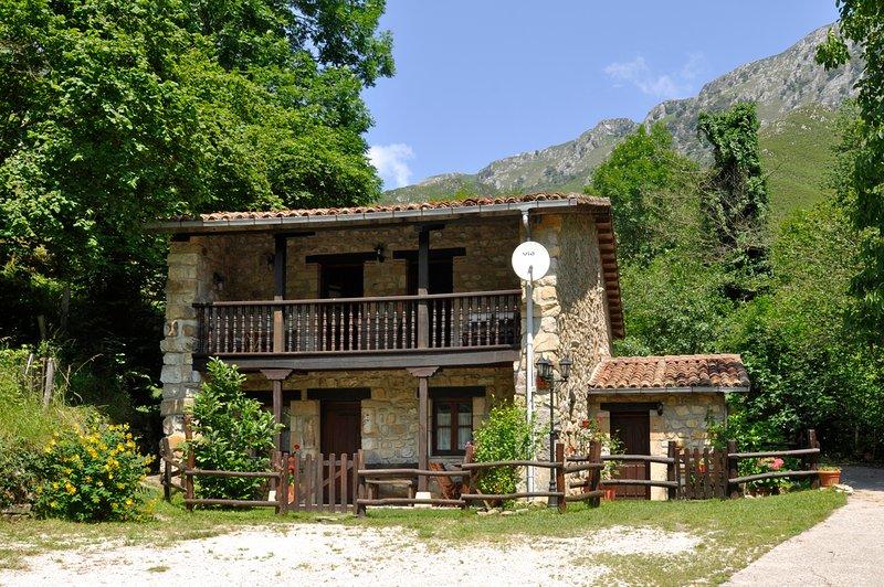 Apartamentos Rurales Río Aliso. Parque Nacional de los Picos de Europa, holiday rental in Alles