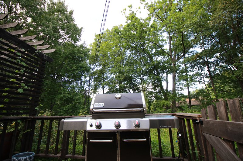 Weber grill is easy to use to entertain your family or friends with a cookout on the deck