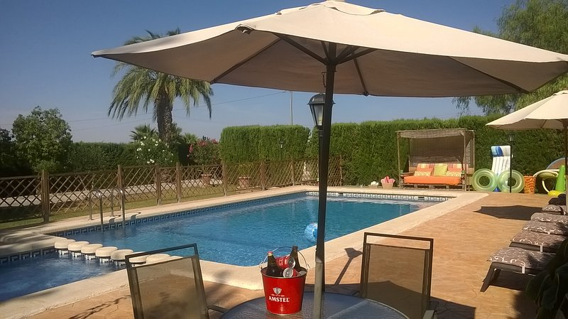 Villa, Private Pool, Garden,  Children's Play Area, BBQ, wifi, disabled access., holiday rental in Catral