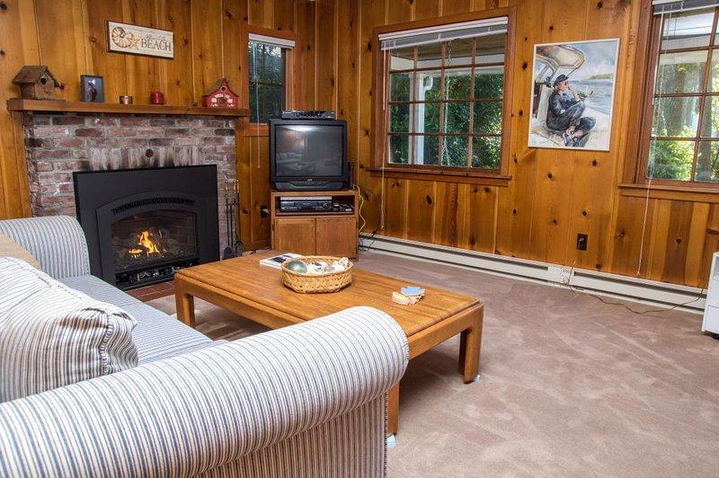 El salón tiene una ambientes rústicos y acogedor, con acentos de la pared de pino.
