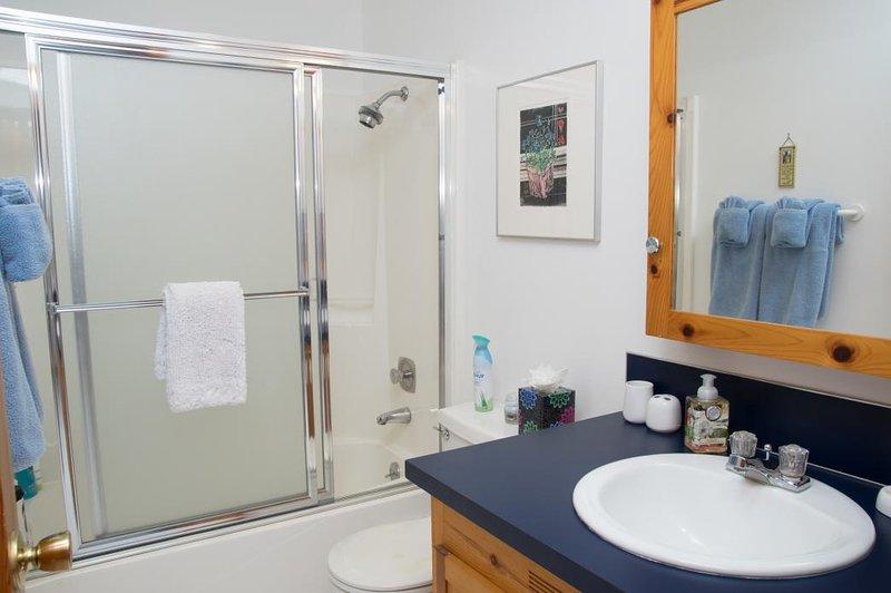 baño de abajo: baño completo con combinación de ducha / bañera.
