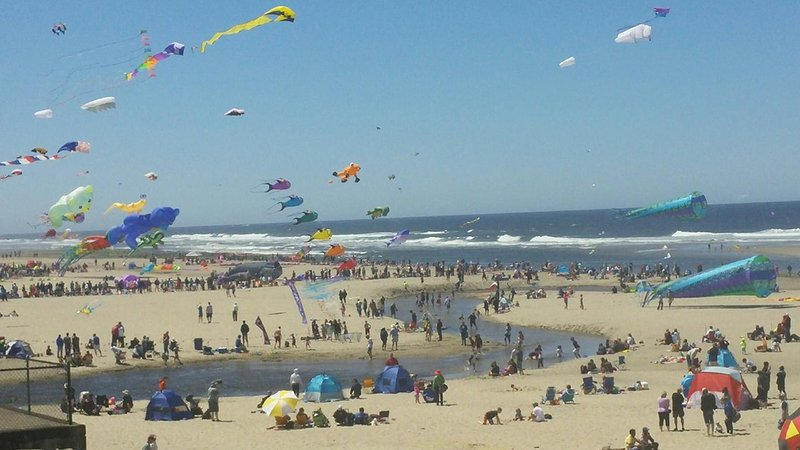 Beachgoers gather for the Kite Festival