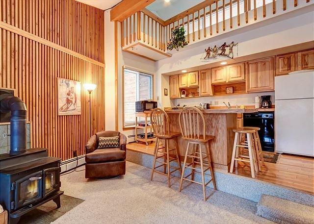 Peak 8 Village Living Room Breckenridge Lodging Vacation Rental