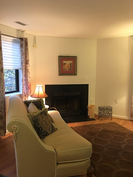 DC Gem, vacation rental in Hyattsville