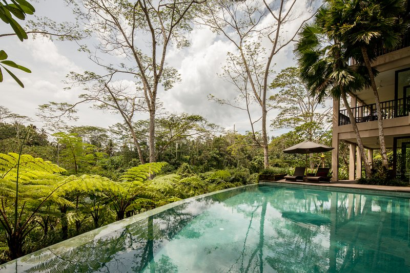 Ubud Luxury Villa - infinity pool overlooking the jungle