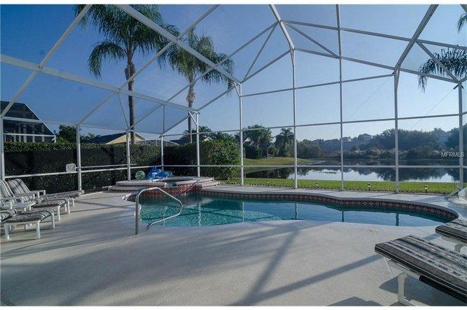 RELAX EN LA FLORIDA SOL y ver el lago con cisnes y patos nadar pasado BY. Sereno y MAJESTIC