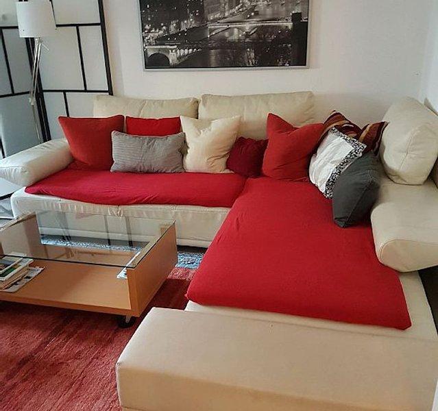 Vacation Apartment in Heidelberg - spacious, good furnishing (# 2219) #2219