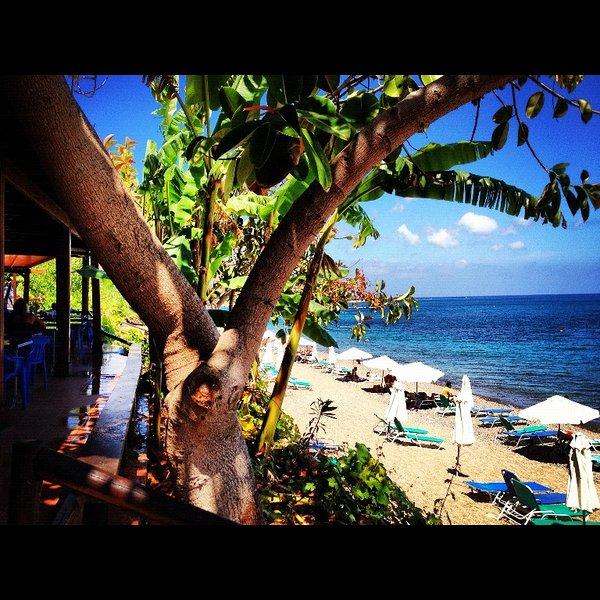 Anassa Beach and Taverna.