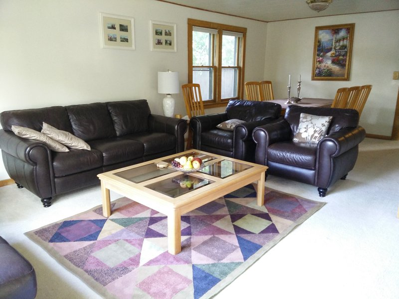 LEATHER FURNITURE IN THE LIVING ROOM