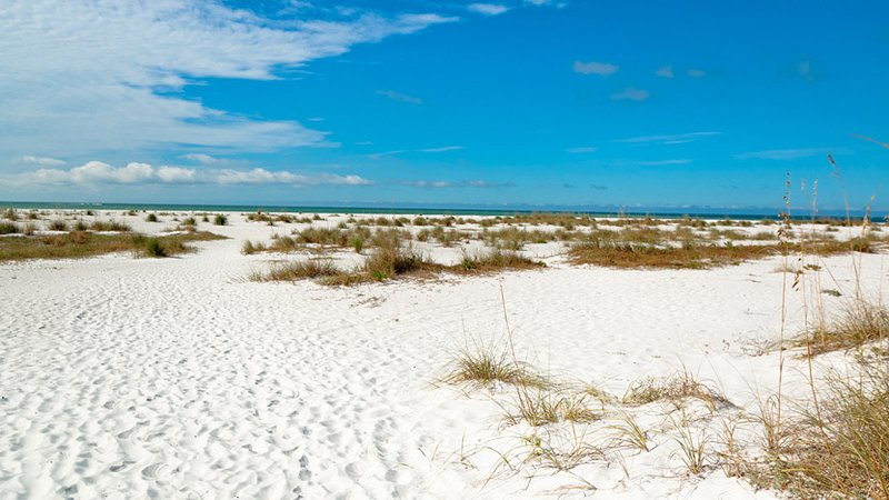Sparkling White Sand
