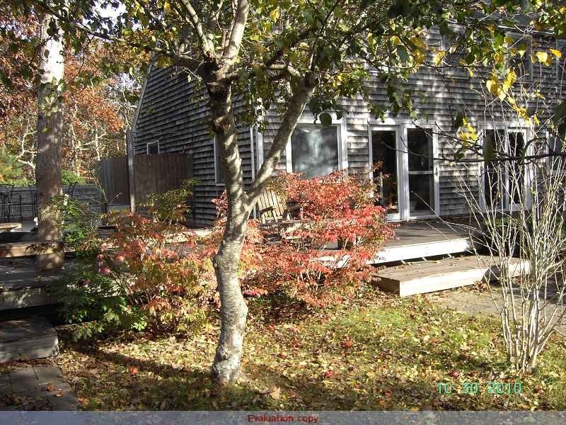 Fall color at the Saltbox
