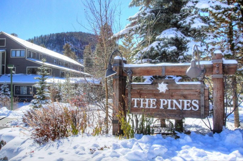 The Pines!