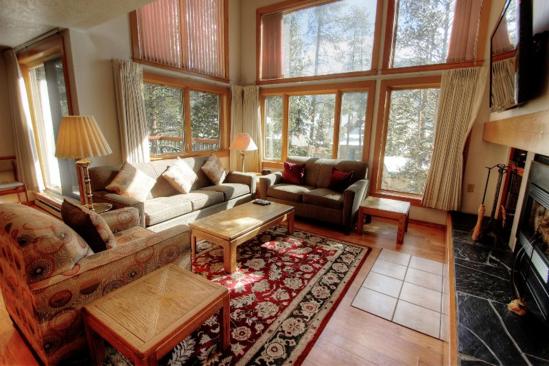 SkyRun Property - '1631 Quicksilver' - Living room - Spacious living room with tall windows letting in natural light.