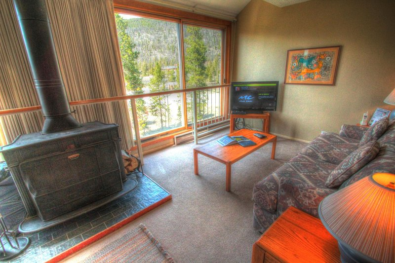 SkyRun Property - '1811 Decatur' - Living Room - The living area has a real wood burning fireplace!