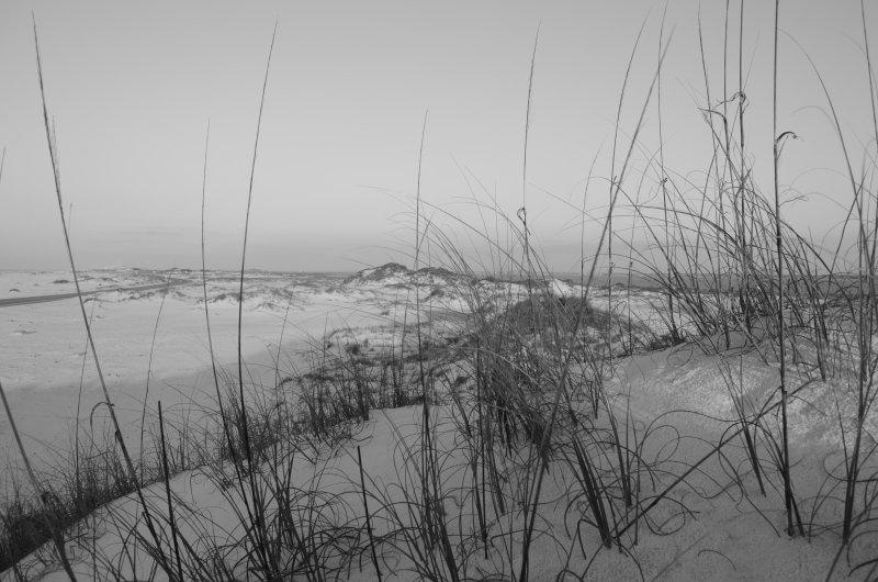Gorgeous beach front