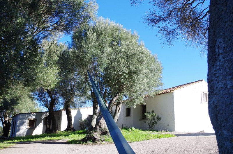 Villa with huge garden (no neigbors) at 20 minutes from beaches and rocky bays., vacation rental in Bassacutena