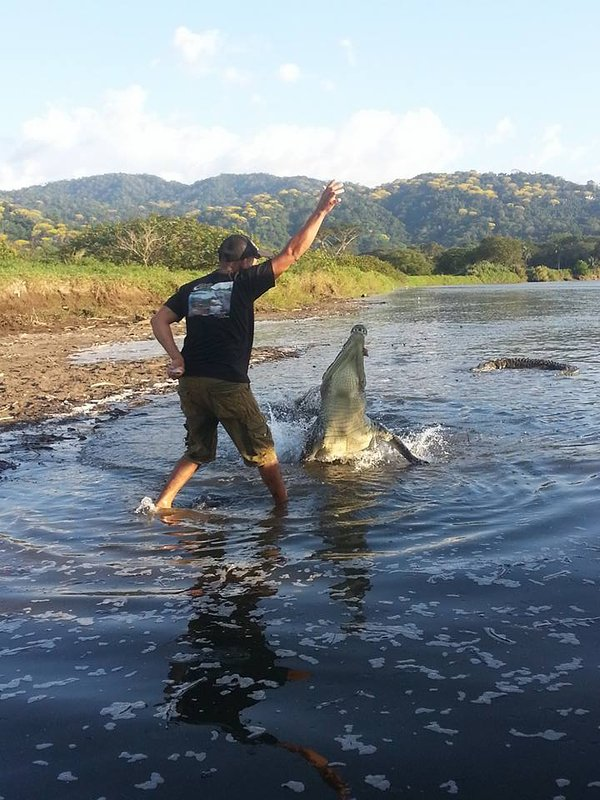 Trabalhamos com as melhores operadoras de turismo na área para garantir que você ver o melhor da Costa Rica