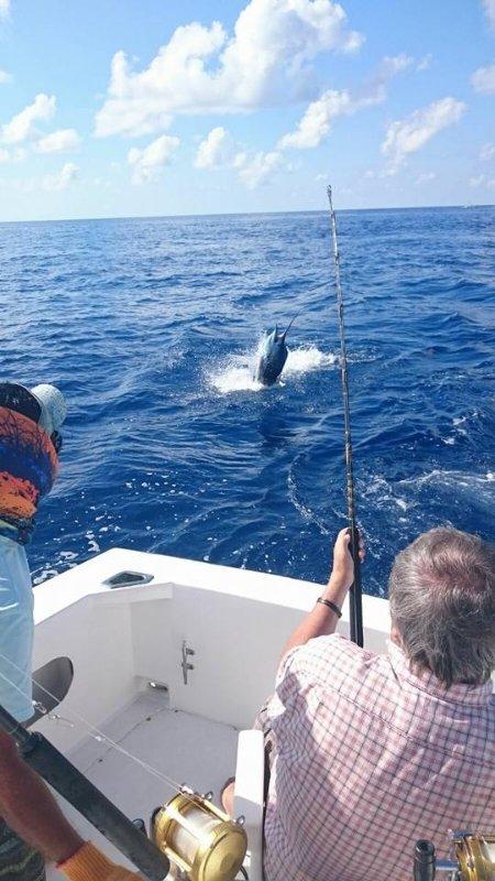 Convidado a pesca. Podemos organizar charters para você sair e encontrar sua captura!