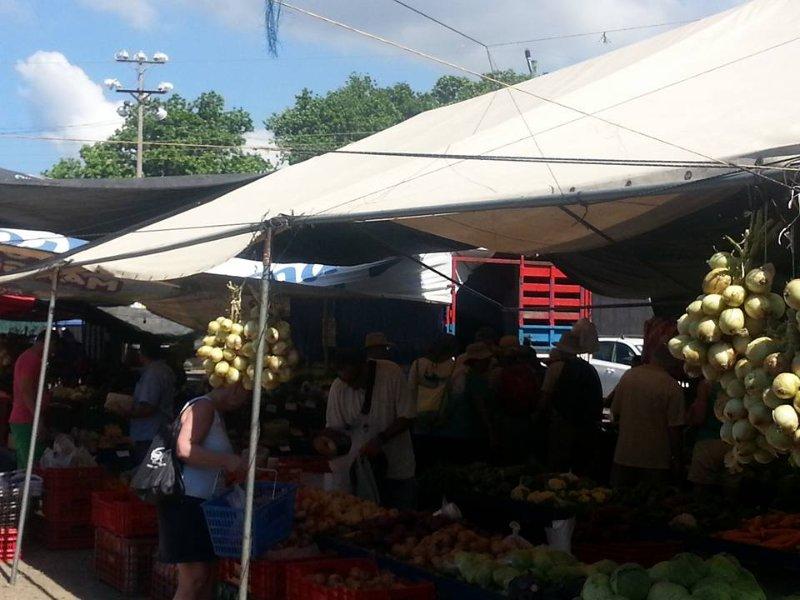 Farmers Market acontece às sextas-feiras. Você pode encontrar tudo que precisa para fazer todas as refeições em sua casa