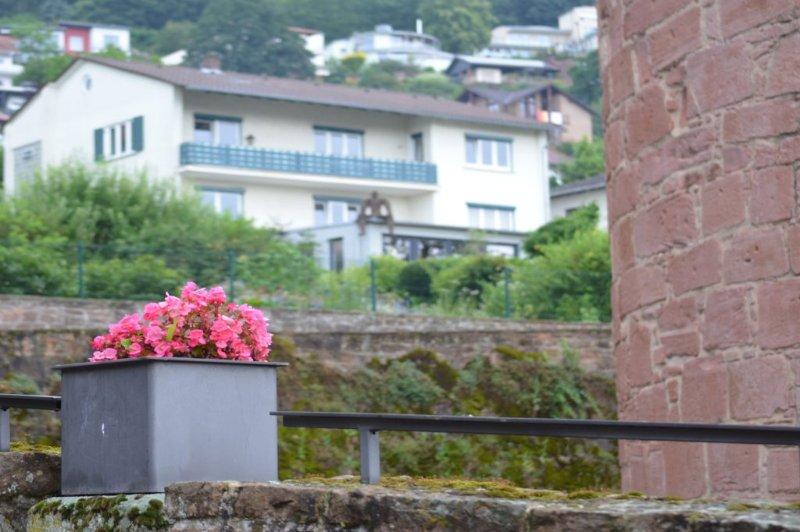 Zentral und ruhig gelegene Ferienwohnung oberhalb der historischen Stadtmauer, vacation rental in Ortenberg
