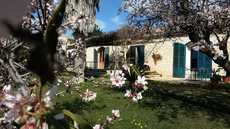 Agriturismo Case Brizza, holiday rental in Zappulla