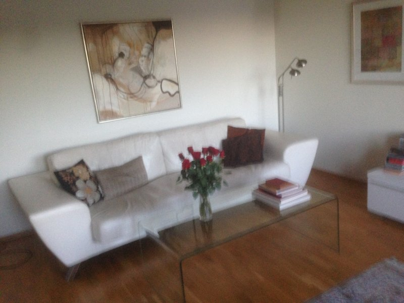 Modern Apartment with elevator, holiday rental in Lillestrom