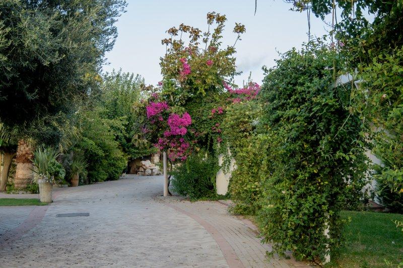 Entrance to the Villa Ippikos