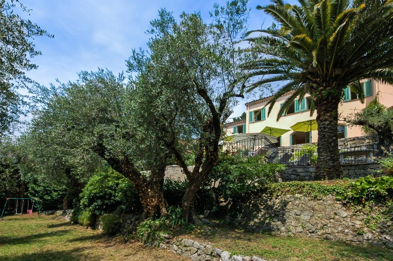 The Mas from garden and Olive groves