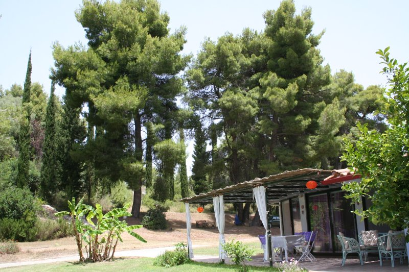 Terry Land Village ARIS, holiday rental in Gastouni