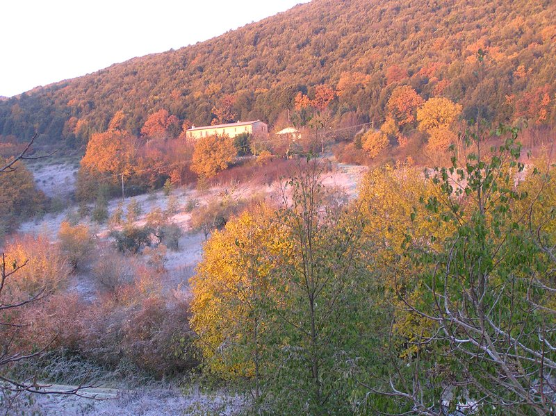 The farmhouse nestles into the back of a mediterranean oak forest. The autumn colours are stunning