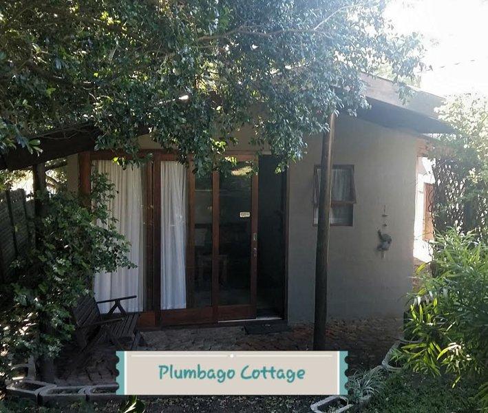 Plumbago Cottage Self Catering upmarket garden cottage, vacation rental in East London