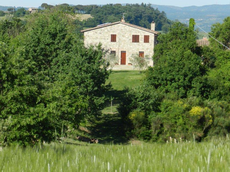 IL GRANO La Campagna di Assignano, vacation rental in Piedicolle