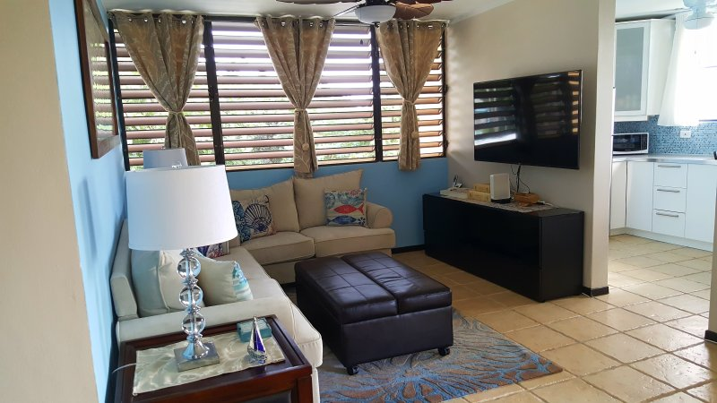 Fully Air-conditioned Condo Beach Front Penthouse Apartment, vacation rental in Naguabo