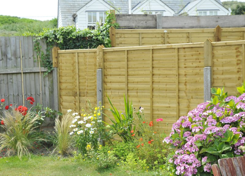 Our sunny south-facing back garden has a patio area, barbecue and lawn with flowers and shrubs...