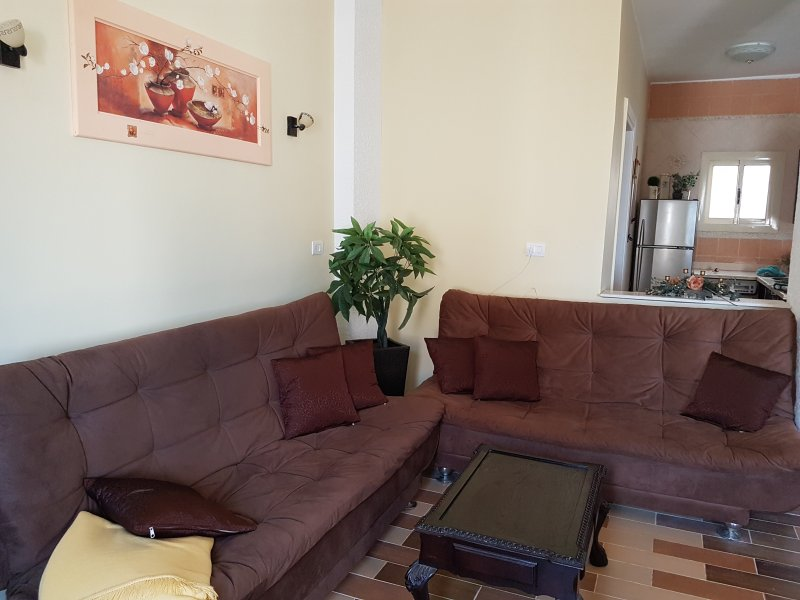 2 large sofa bed for folding
