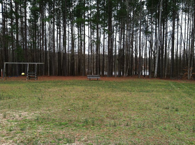 Flat, open backyard perfect for playing bocce, frisbee, kickball, Kan-Jam, wiffleball etc!