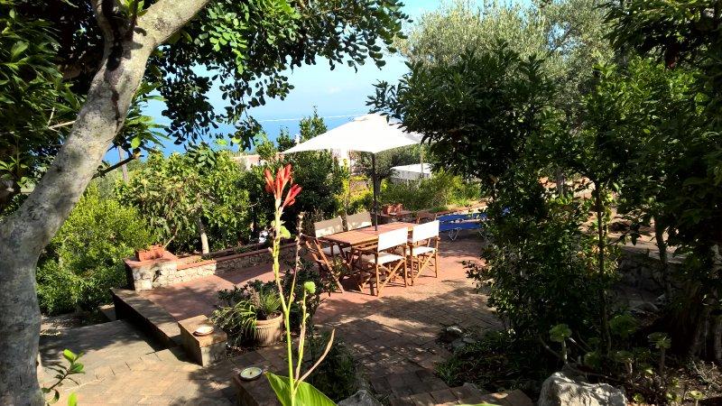 Spacious house with sea view, location de vacances à Anacapri