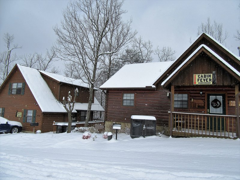 We own both cabins side by side for larger gatherings.