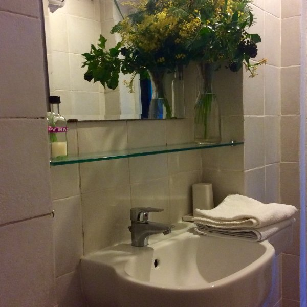 Room, bathroom close to Leonardo Da Vinci born place, vacation rental in Mezzana